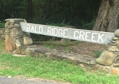 Bald Ridge - Sign