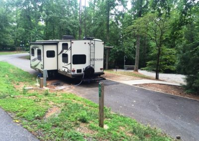 Shady Grove - Camp site 71